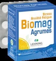 Lehning Biomag Comprimés à Croquer Agrumes B/90 à JUAN-LES-PINS