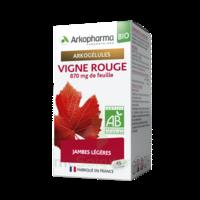 Arkogélules Vigne Rouge Bio Gélules Fl/45 à JUAN-LES-PINS