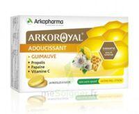 Arkoroyal Propolis Pastilles Adoucissante Gorge Guimauve Miel Citron B/24 à JUAN-LES-PINS