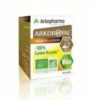 Arkoroyal 100% Gelée Royale Bio Gelée Pot/40g à JUAN-LES-PINS