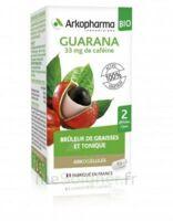 Arkogélules Guarana Bio Gélules Fl/45 à JUAN-LES-PINS