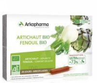 Arkofluide Bio Ultraextract Artichaut Fenouil Solution Buvable 20 Ampoules/10ml à JUAN-LES-PINS