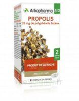 Arkogélules Propolis Bio Gélules Fl/45 à JUAN-LES-PINS