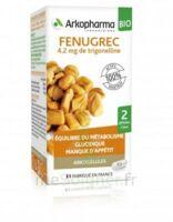 Arkogélules Fenugrec Bio Gélules Fl/40 à JUAN-LES-PINS