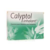 Calyptol Inhalant, émulsion Pour Inhalation Par Fumigation à JUAN-LES-PINS