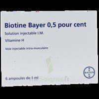 Biotine Bayer 0,5 Pour Cent, Solution Injectable I.m. à JUAN-LES-PINS