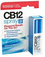 Cb 12 Spray Haleine Fraîche 15ml à JUAN-LES-PINS