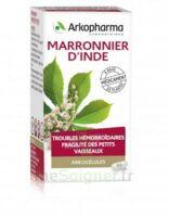 Arkogelules Marronnier D'inde Gélules Fl/45 à JUAN-LES-PINS