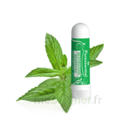 Puressentiel Respiratoire Inhaleur Respiratoire Aux 19 Huiles Essentielles - 1 Ml à JUAN-LES-PINS