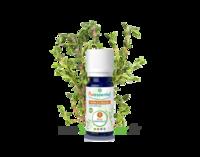 Puressentiel Huiles Essentielles - Hebbd Thym à Linalol Bio* - 5 Ml à JUAN-LES-PINS