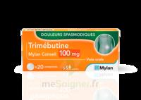 Trimebutine Mylan Conseil 100 Mg, Comprimé à JUAN-LES-PINS