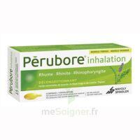 Perubore Caps Inhalation Par Vapeur Inhalation Plq/15 à JUAN-LES-PINS