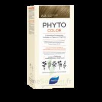 Phytocolor Kit Coloration Permanente 8.3 Blond Clair Doré à JUAN-LES-PINS