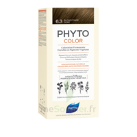 Phytocolor Kit Coloration Permanente 6.3 Blond Foncé Doré à JUAN-LES-PINS