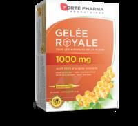 Forte Pharma Gelée Royale 1000 Mg Solution Buvable 20 Ampoules/10ml à JUAN-LES-PINS