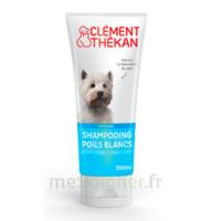 Clément Thékan Shampooing Poils Blancs T/200ml à JUAN-LES-PINS