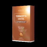 Terracotta Cicktail Autobronzant Comprimés B/30 à JUAN-LES-PINS