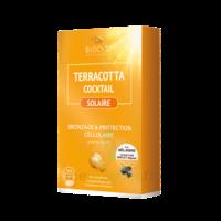 Terracotta Cocktail Solaire Comprimés B/30 à JUAN-LES-PINS