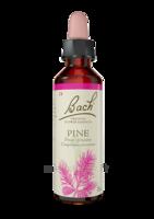 Fleurs De Bach® Original Pine - 20 Ml à JUAN-LES-PINS