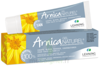 Lehning Arnica Gel T/50g à JUAN-LES-PINS