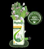 Phytoxil Toux Sans Sucre Sirop Adulte Enfant +2 Ans Fl/120ml à JUAN-LES-PINS