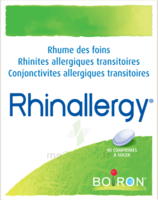 Boiron Rhinallergy Comprimés B/40 à JUAN-LES-PINS