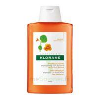 Klorane Capucine Shampooing 200ml à JUAN-LES-PINS