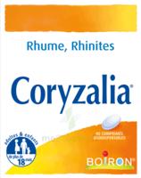 Boiron Coryzalia Comprimés Orodispersibles à JUAN-LES-PINS