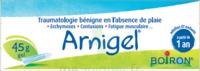 Boiron Arnigel Gel T/45g à JUAN-LES-PINS